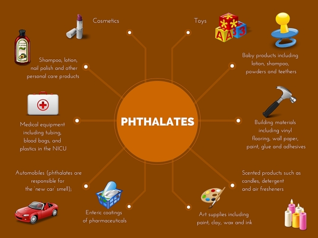 Phthalates Infographic